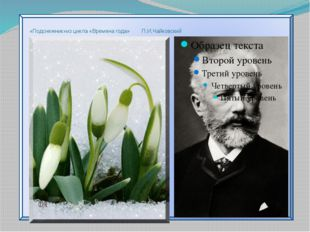 «Подснежник»из цикла «Времена года» П.И.Чайковский