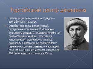 Организация повстанческих отрядов – всего 50 тысяч человек. Октябрь 1916 года
