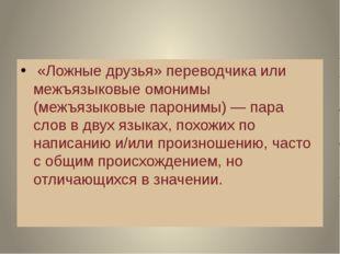 «Ложные друзья» переводчика или межъязыковые омонимы (межъязыковые паронимы)