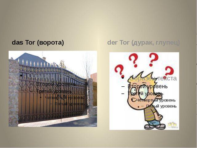 das Tor (ворота) der Tor (дурак, глупец)
