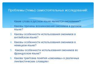 Какие слова в русском языке являются омонимами? Каковы причины возникновения