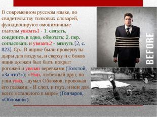 В современном русском языке, по свидетельству толковых словарей, функционирую