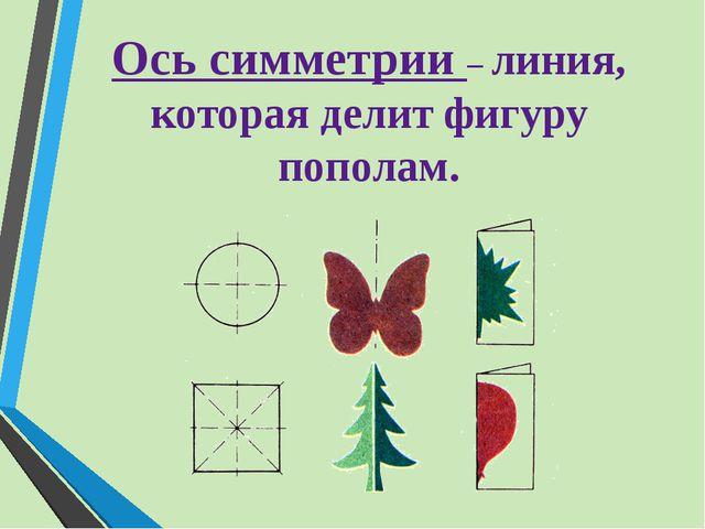 Ось симметрии – линия, которая делит фигуру пополам.