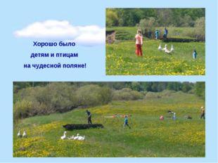 Хорошо было детям и птицам на чудесной поляне!
