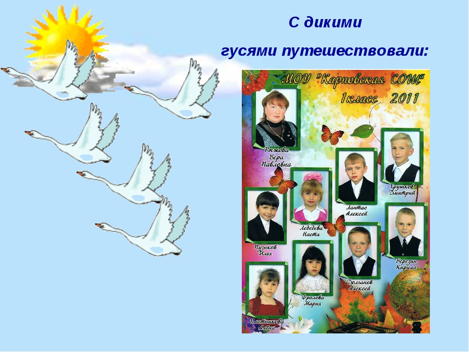 С дикими гусями путешествовали: Ученики 1 класса: Долганов Алексей, Лантас Ал...