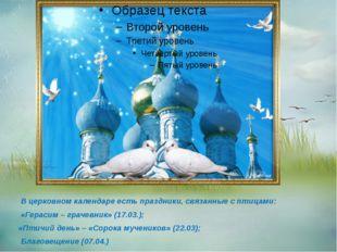 В церковном календаре есть праздники, связанные с птицами: «Герасим – грачев