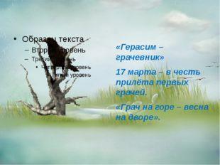 «Герасим – грачевник» 17 марта – в честь прилёта первых грачей. «Грач на гор