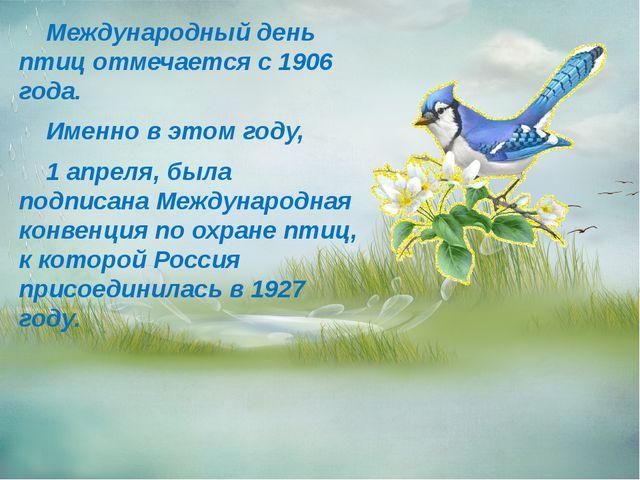 Международный день птиц отмечается с 1906 года. Именно в этом году, 1 апреля...