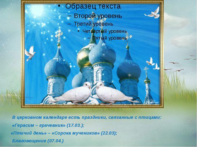 В церковном календаре есть праздники, связанные с птицами: «Герасим – грачев...
