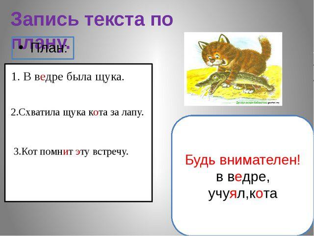 Запись текста по плану. План: 1. В ведре была щука. 2.Схватила щука кота за л...