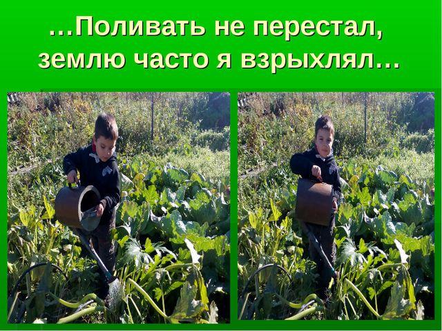 …Поливать не перестал, землю часто я взрыхлял…