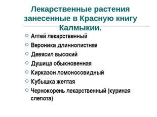 Лекарственные растения занесенные в Красную книгу Калмыкии. Алтей лекарствен