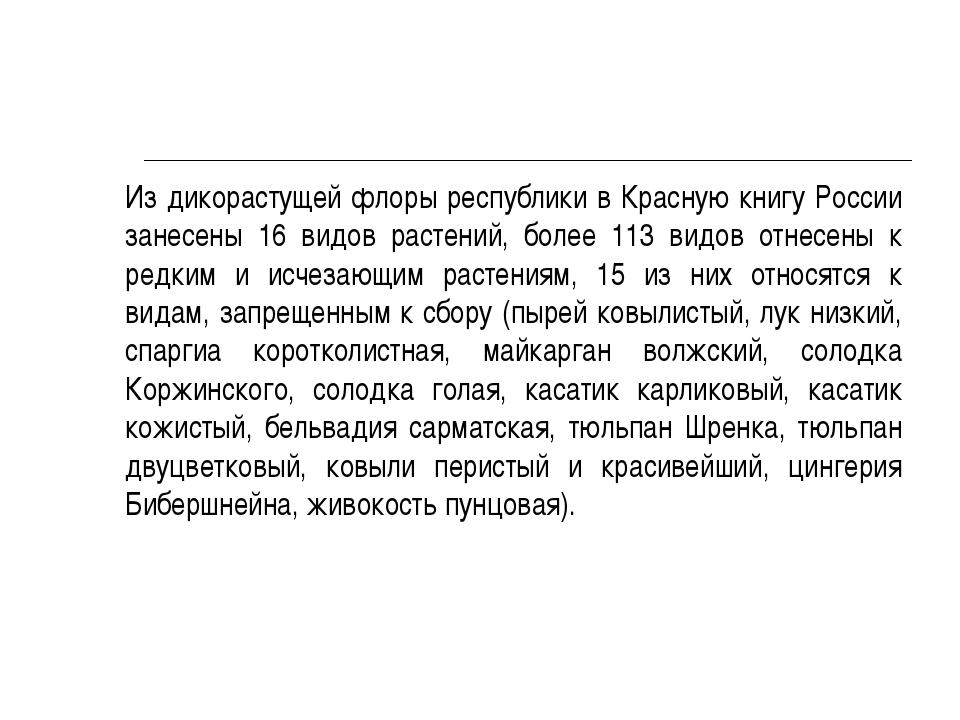 Из дикорастущей флоры республики в Красную книгу России занесены 16 видов ра...