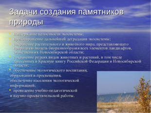 Задачи создания памятников природы поддержание целостности экосистемы; предот