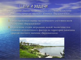 Цели и задачи Цель работы: оценка экологического состояния экосистемы памятн