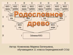 Автор: Коженкова Марина Евгеньевна, обучающаяся 11 класса Берендеевской СОШ