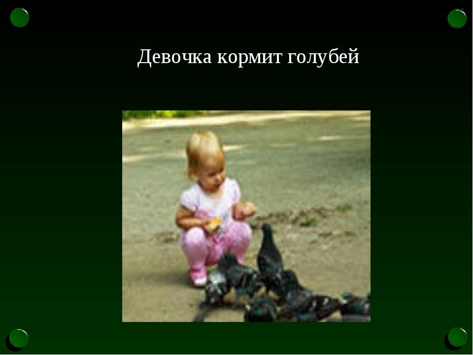 Девочка кормит голубей