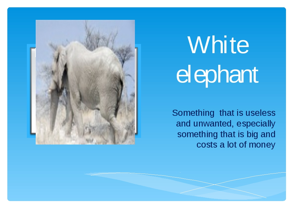 White elephant Something that is useless and unwanted, especially something t...