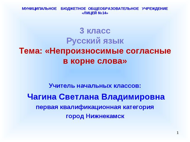 МУНИЦИПАЛЬНОЕ БЮДЖЕТНОЕ ОБЩЕОБРАЗОВАТЕЛЬНОЕ УЧРЕЖДЕНИЕ «ЛИЦЕЙ №14» 3 класс Р...