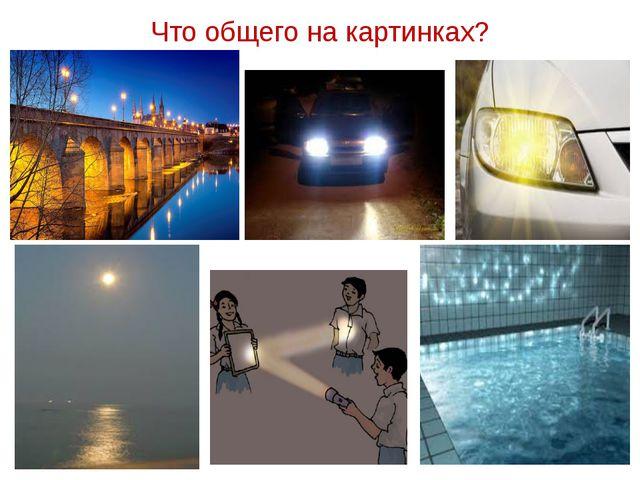 Что общего на картинках?