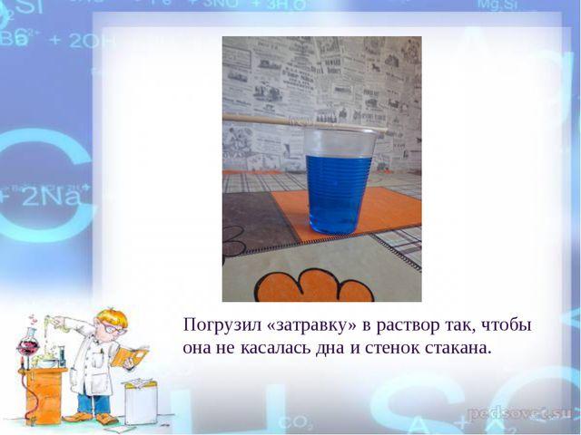 Погрузил «затравку» в раствор так, чтобы она не касалась дна и стенок стакана.