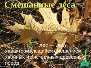 Смешанные леса Сме́шанныйлес—лес, характеризующийся смешением хвойных или