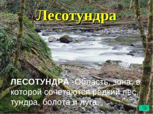 Лесотундра ЛЕСОТУНДРА -Область, зона, в которой сочетаютсяредкий лес, тундра