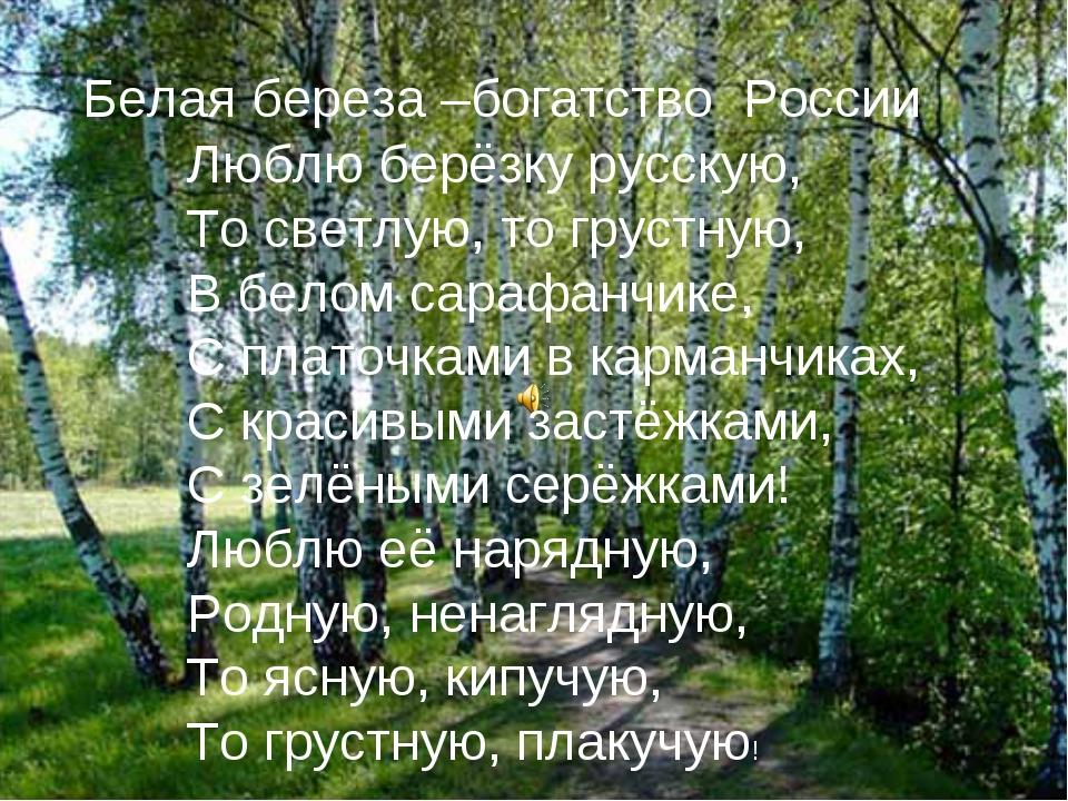 Белая береза –богатство России Люблю берёзку русскую, То светлую, то грустну...