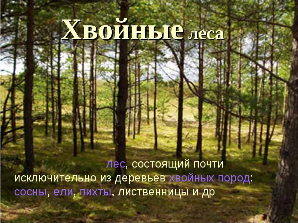 Хвойные леса Хво́йный лес—лес, состоящий почти исключительно из деревьевхв...
