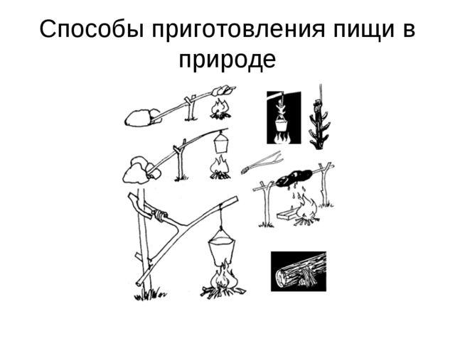 Способы приготовления пищи в природе
