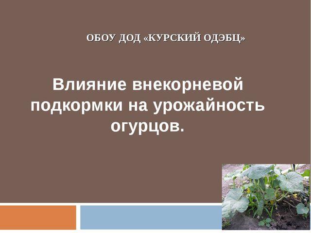 ОБОУ ДОД «КУРСКИЙ ОДЭБЦ» Влияние внекорневой подкормки на урожайность огурцов.