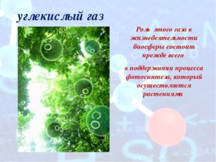 углекислый газ Роль этого газа в жизнедеятельности биосферы состоит прежде вс