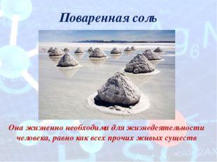 Поваренная соль Она жизненно необходима для жизнедеятельности человека, равно