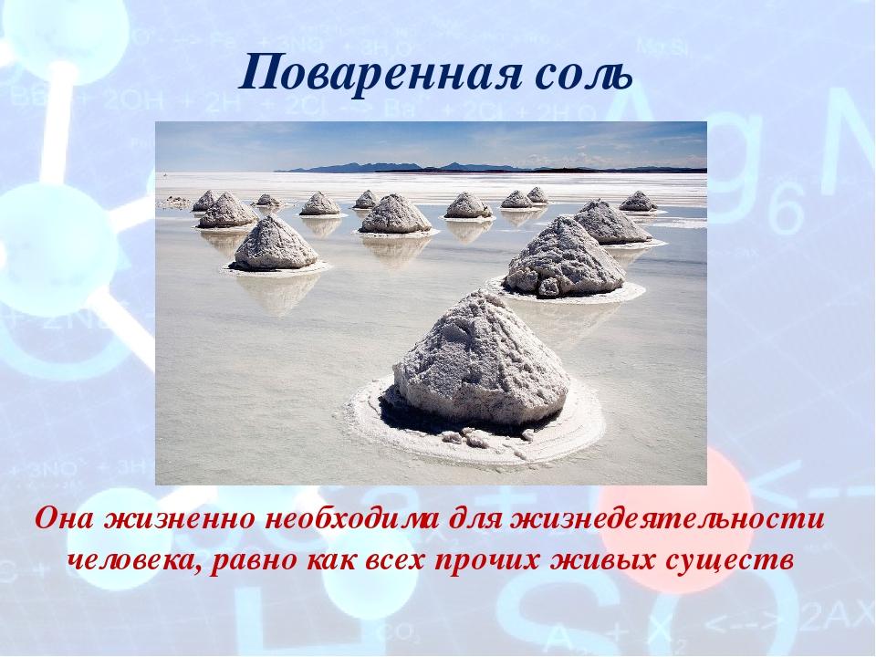 Поваренная соль Она жизненно необходима для жизнедеятельности человека, равно...