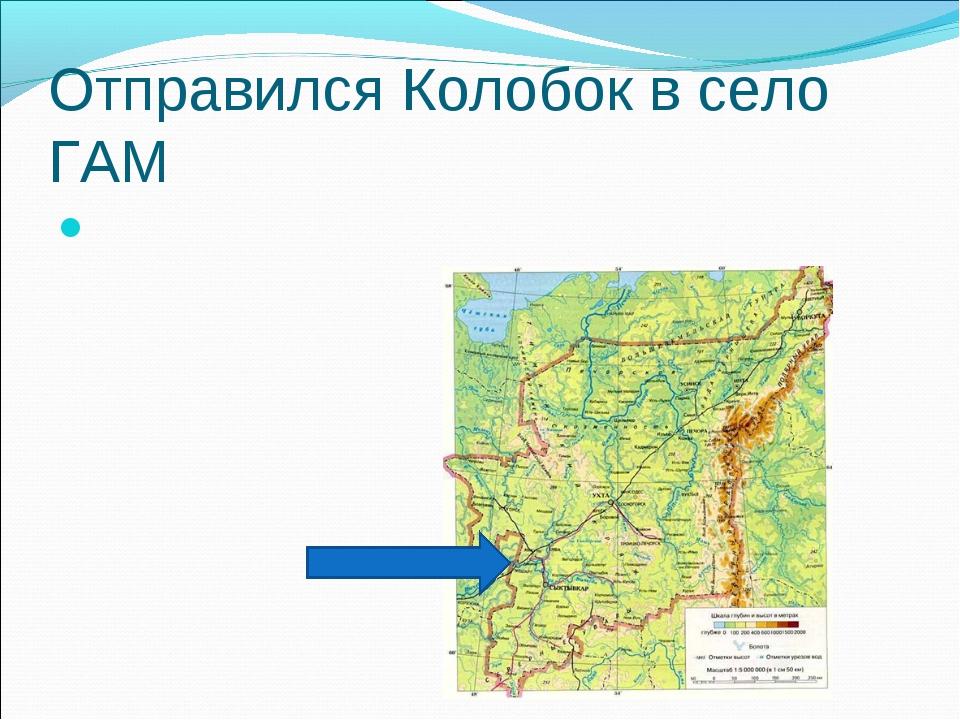 Отправился Колобок в село ГАМ