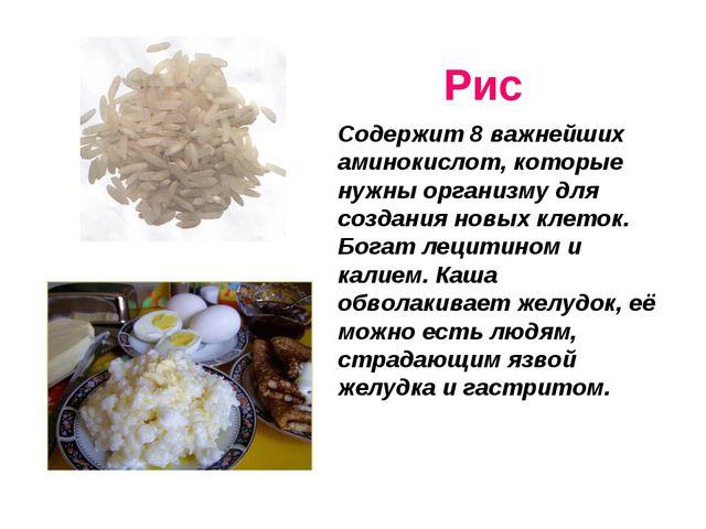Рис Содержит 8 важнейших аминокислот, которые нужны организму для создания н...