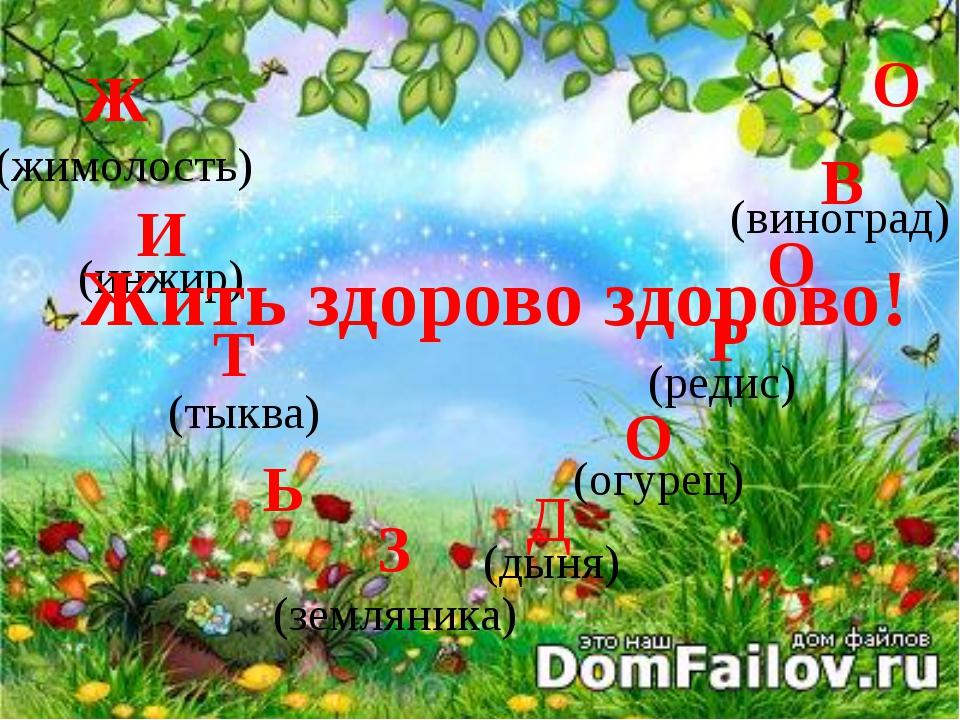 (жимолость) (инжир) (тыква) (земляника) (дыня) (огурец) (редис) (виноград) Ж...