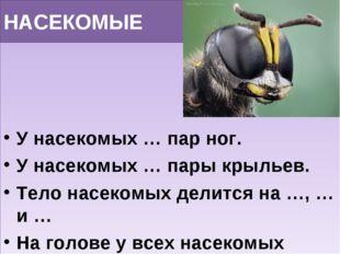 НАСЕКОМЫЕ У насекомых … пар ног. У насекомых … пары крыльев. Тело насекомых д