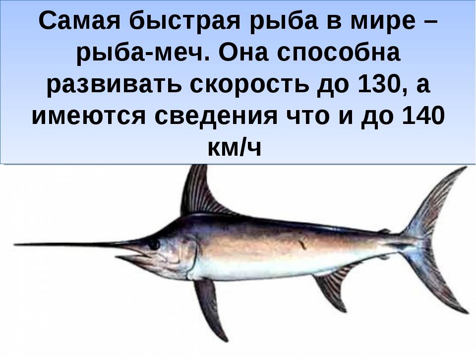 Самая быстрая рыба в мире – рыба-меч. Она способна развивать скорость до 130,...