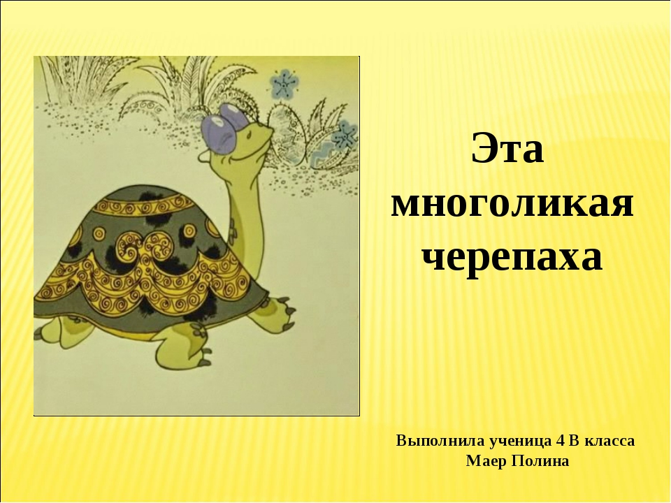 Эта многоликая черепаха Выполнила ученица 4 В класса Маер Полина