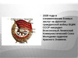 1928 года в ознаменование боевых заслуг на фронтах гражданской войны ВЦИК СС