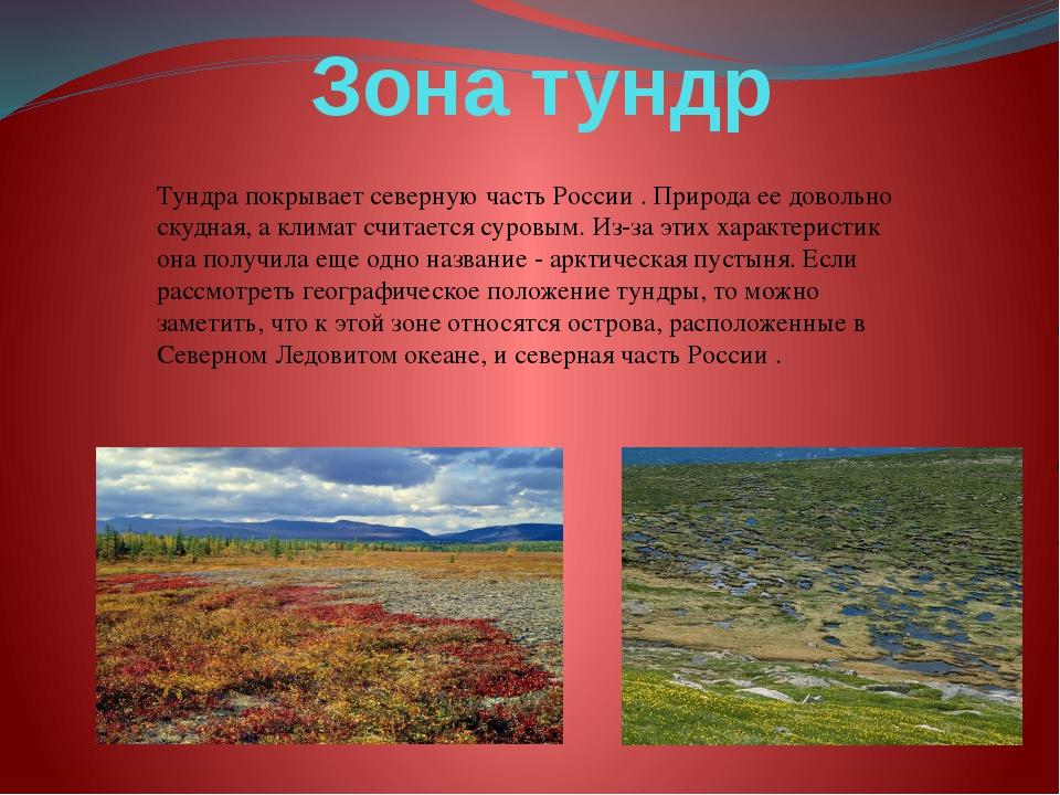 Зона тундр Тундра покрывает северную часть России . Природа ее довольно скудн...