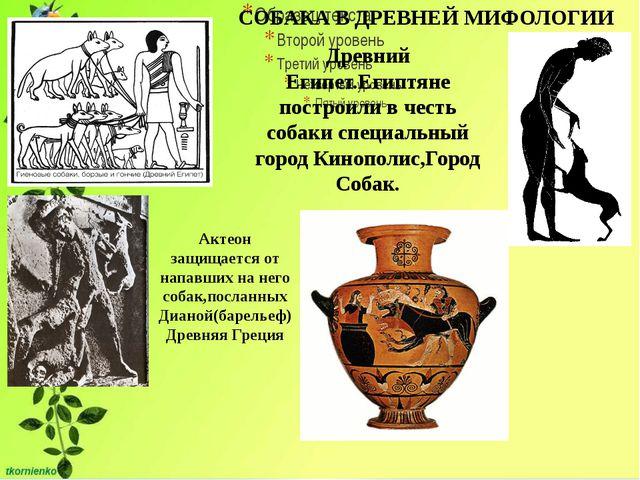 СОБАКА В ДРЕВНЕЙ МИФОЛОГИИ Древний Египет.Египтяне построили в честь собаки...
