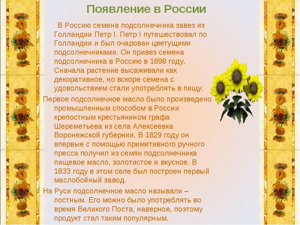 Появление в России В Россию семена подсолнечника завез из Голландии Петр I. П...