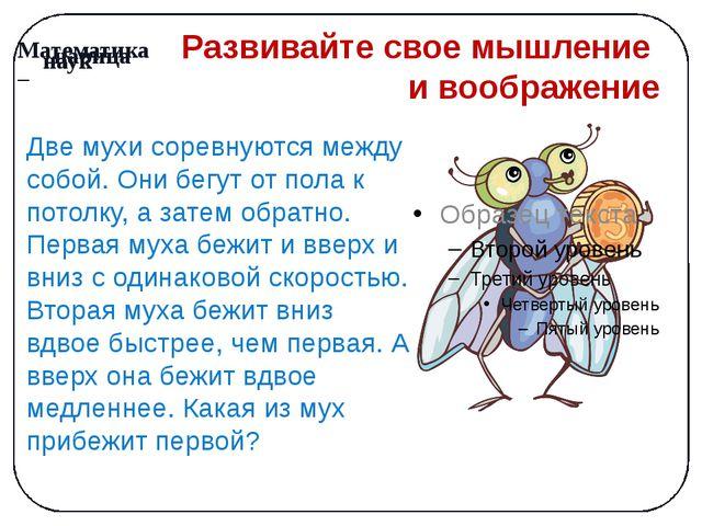 Развивайте свое мышление и воображение Две мухи соревнуются между собой. Они...