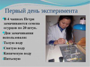 Первый день эксперимента В 4 чашках Петри замачиваются семена огурцов по 20 ш