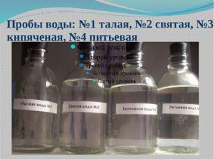 Пробы воды: №1 талая, №2 святая, №3 кипяченая, №4 питьевая