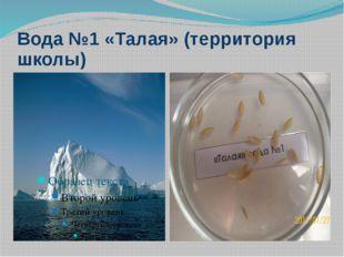 Вода №1 «Талая» (территория школы)