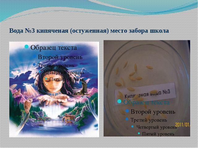 Вода №3 кипяченая (остуженная) место забора школа