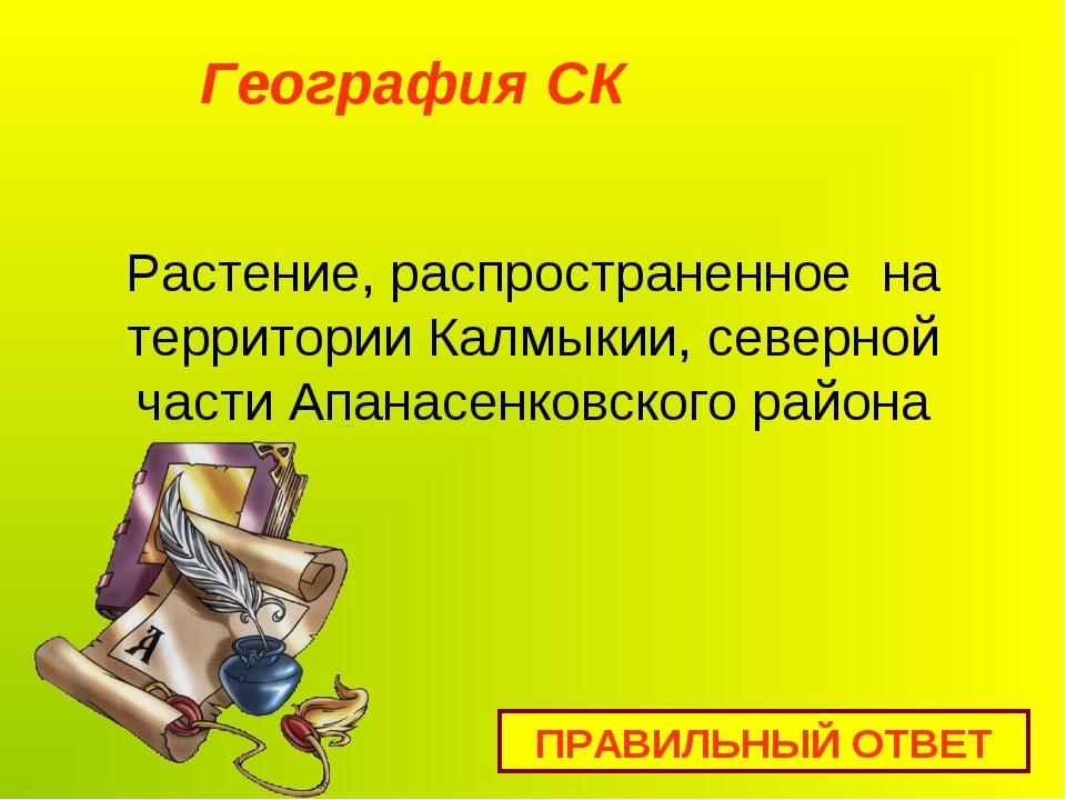 Растение, распространенное на территории Калмыкии, северной части Апанасенков...
